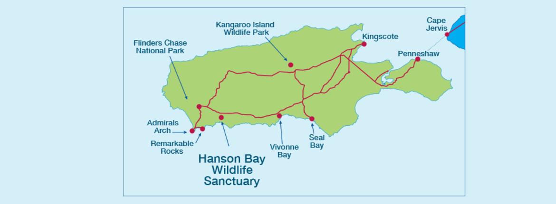 Gt nature experiences gt hanson bay wildlife sanctuary nocturnal tour