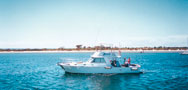 kangaroo island fishing