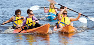 kayaking kangaroo island